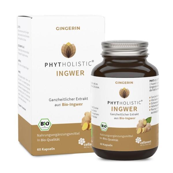 Phytholistic - BIO Gingerin Ingwer Kapseln (60 Stück / 1 Monat) mit Gingerol und Shogaol von Cellavent Healthcare