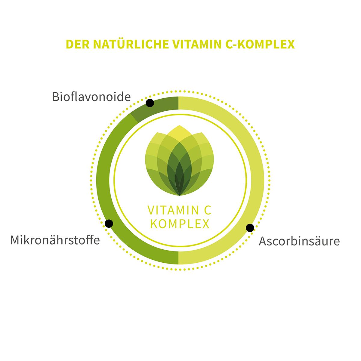 Phytholistic Vitamin C Bio Vitamin C Kapseln 120 St